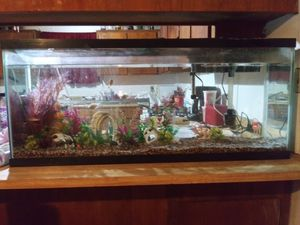 100 gallon fish tank for Sale in Tulare, CA