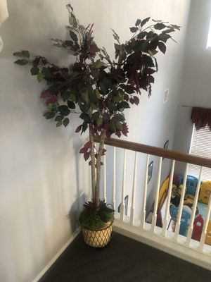9 feet tall plant with iron pot for decoration for Sale in Mansfield, TX