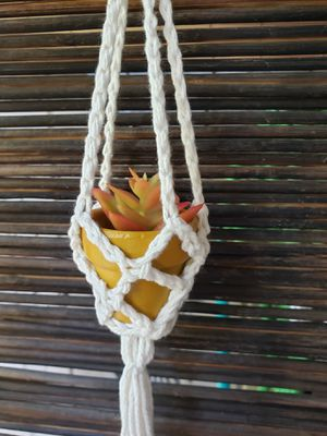 Mini Boho Plant Hanger with Pot, crochet, macrame for Sale in Garden Grove, CA