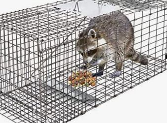 """New Live Animal Cage Trap 32"""" X 12.5"""" X 12"""" w/Iron Door Steel Cage Catch Release Humane Rodent Cage for Rabbits, Stray Cat, Squirrel, Raccoon, Mole, G for Sale in Whittier,  CA"""