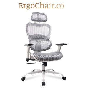 Magnificent Ergonomic Mesh Chair with Adjustable Headrest & Armrest for Sale in Tempe, AZ