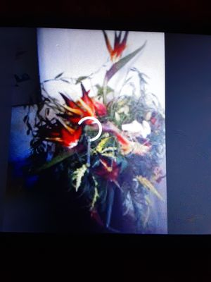 Black vase with bird of paradise artificial flowers for Sale in Henderson, NV