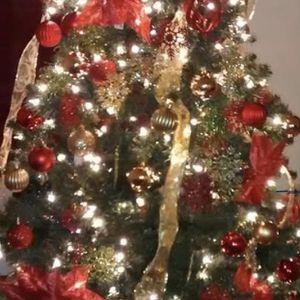 Christmas Tree for Sale in Buckeye, AZ