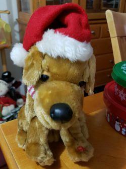 Perro canta Canciones De Navidad for Sale in Hialeah,  FL