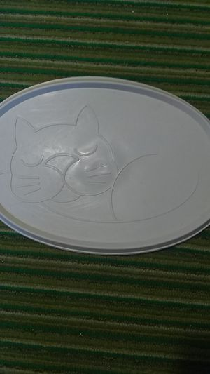 Plastic feeding placemat. for Sale in Freeland, PA
