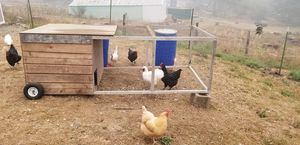 Chicken coop for Sale in Oregon City, OR