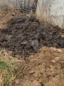 Free Aged Horse Manure for Sale in Grove City,  OH