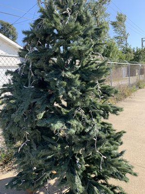 7 ft Christmas Tree for Sale in Oak Lawn, IL