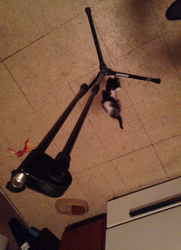 MK-10 Professional Microphone Stand