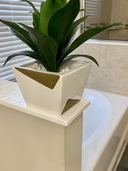 Beautiful Touch Feel Plant for Sale in Port St. Lucie,  FL