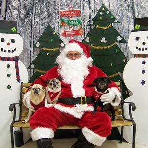 Santa Pictures for Sale in Virginia Beach, VA