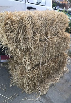 Hay for cow or horse for Sale in San Jose, CA