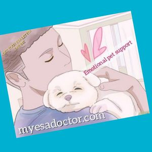 Getting lawful emotional support for pet animal☆certified Physician for Sale in Dallas, TX