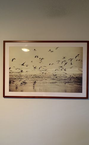 42 x 28 framed picture for Sale in Santa Monica, CA