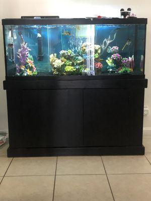 75 gal fish tank for Sale in Las Vegas, NV