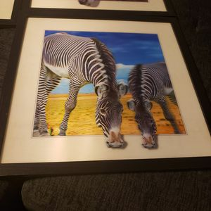 3D zebra picture with frame for Sale in Zephyrhills, FL