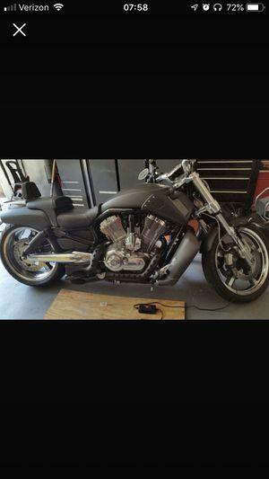2009 Harley VROD Muscle for Sale in Haymarket, VA