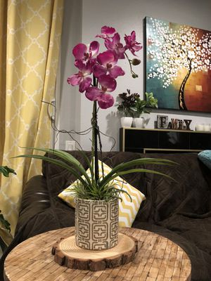 Artificial Orchid High Quality Fake Orchid Plant with 4 Real Air Plants for Sale in La Habra Heights, CA