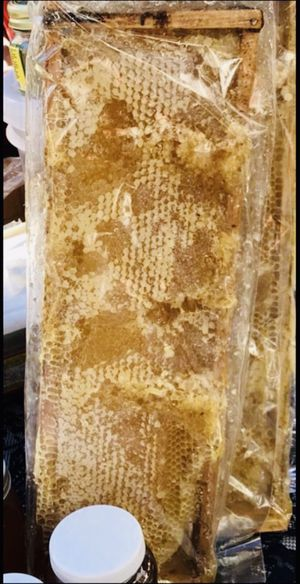 Honey Comb (Whole) Organic🐝 for Sale in Lincoln Acres, CA
