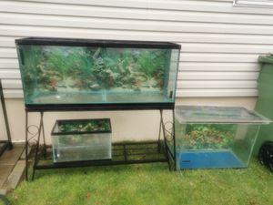 Fish tanks for Sale in Monroe Township, NJ