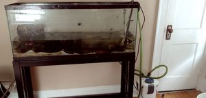 55g aquarium fish tank set up, heater, light, filter, plants, decor for Sale in Cleveland, OH