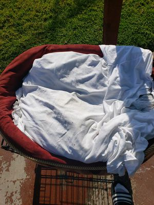 Dog bed for Sale in Richmond, CA