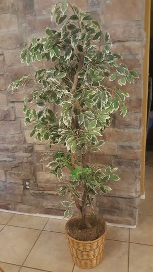 Decorative artificial tree for Sale in Chandler, AZ
