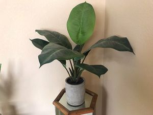 FAKE PLANT SET for Sale in Henderson, NV