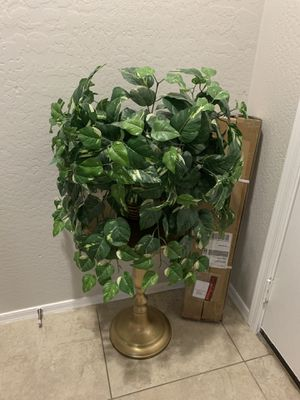 Artificial plant for Sale in Peoria, AZ