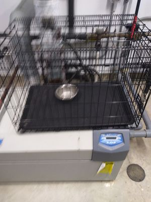 Dog crate foldable 30x21x24 for Sale in Binghamton, NY