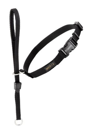 Solid Dog Headcollar for Sale in Worcester, MA