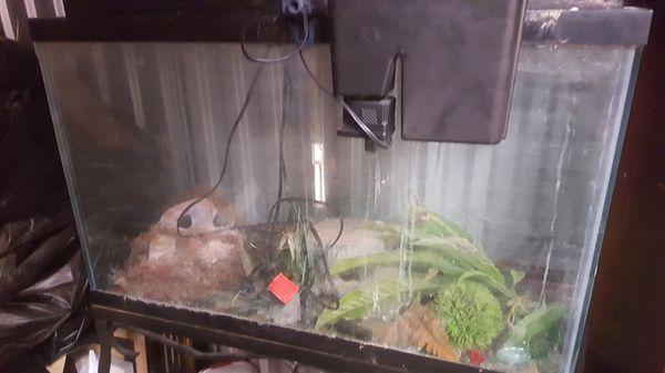 Fish tank 75 dollars