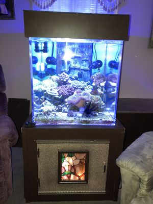 65 gallon saltwater cube for Sale in Portland, OR