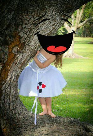 Hand made alice in wonderland costume for Sale in Olympia Heights, FL