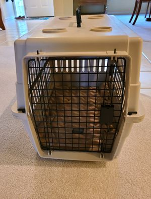 Medium/Large Plastic Pet Carrier/Crate for Sale in Melbourne, FL