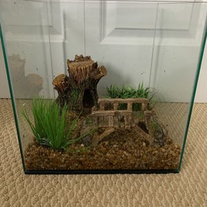 6 Gallon Frameless Tank, With Decor, Filter, Heater, And Light. for Sale in Everett, WA