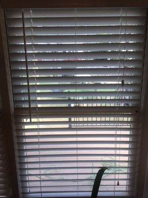 Plantation | Blinds & Window Shades for Sale in Raleigh, NC