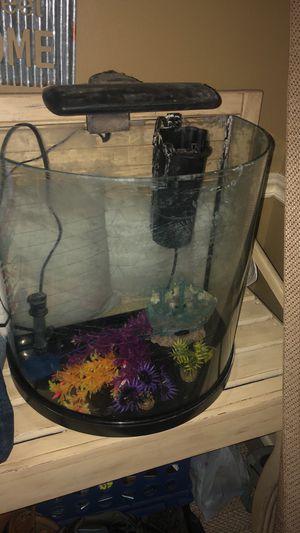 10g aquarium, pump, heater, light, ship, plants for Sale in Pineville, LA