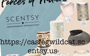 Scentsy Mini Warmers for Sale in Lexington, KY