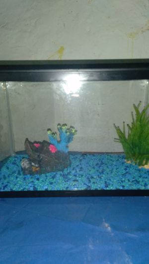 10 gallon fish tank; no filter, just tank and 2 decorations and rocks for Sale in Trenton, NJ