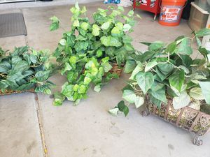 Assortment of Fake Plants for Sale in Sun City West, AZ
