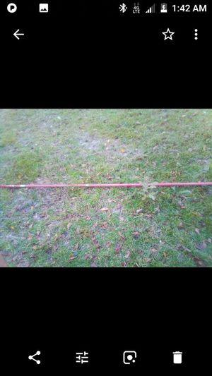 Shrimp bait poles for Sale in Eastover, SC