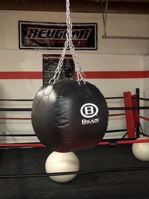 Assorted balasz brand punching bags for Sale in Brush Prairie, WA