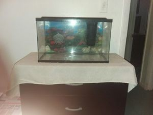 10 gallon fish tank for Sale in Gautier, MS