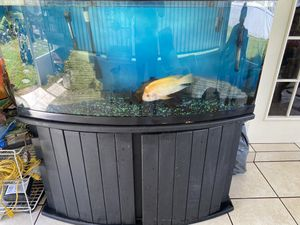 72 gallons half moon fresh water tank for Sale in Kissimmee, FL