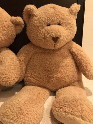 Teddy Bear for Sale in Rockville, MD