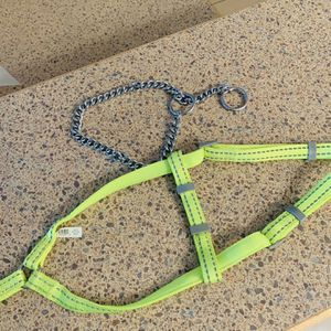 Dog Collar/harness for Sale in Redlands, CA