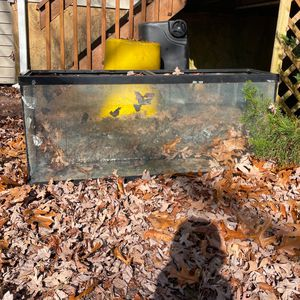 Fish Tank for Sale in Browns Mills, NJ