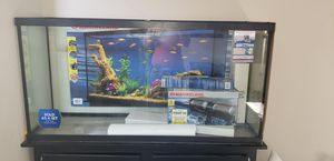 Brand new 60 gallon fish tank with stand for Sale in Aurora, CO