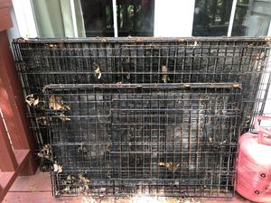 dog crates for Sale in Laurel, MD